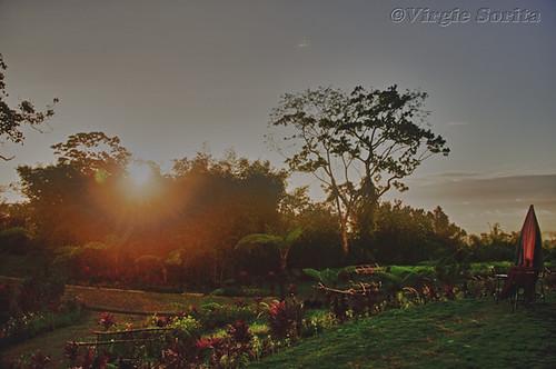Stonehouse Gardens, Panicuason, Naga City