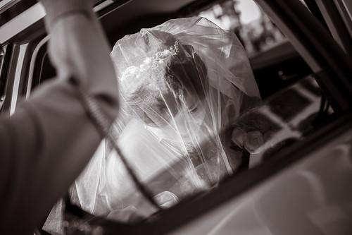 Flickr-0160