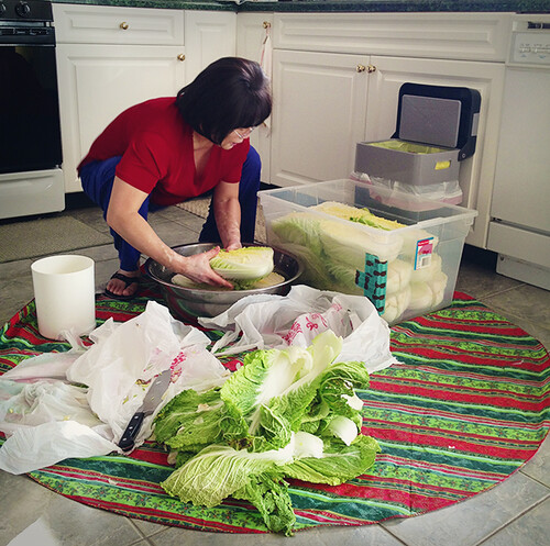 Prepping Cabbage for Kimchi
