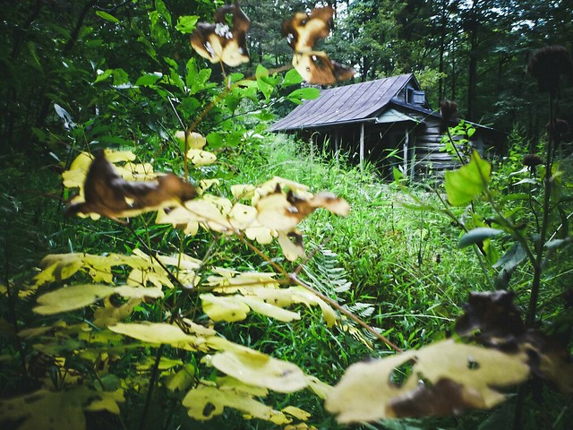 corbin cabin