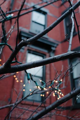Lights by JoelZimmer