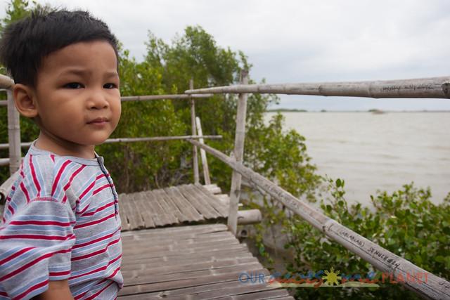 Bakhawan Eco-Park-46.jpg