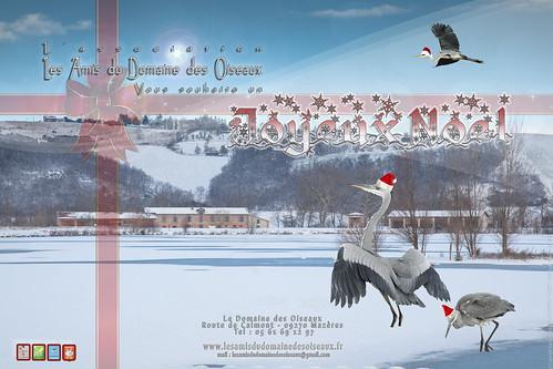 Carte de Noel 2012 - Les Amis Du Domaine Des Oiseaux by  Christophe-RAMOS