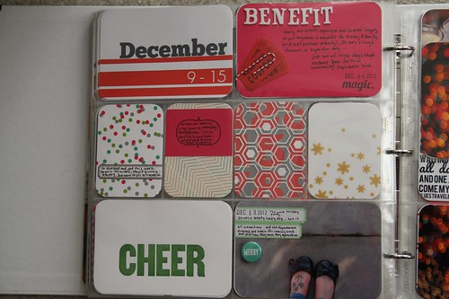 Project Life: December
