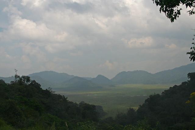 Nyungwe National Park