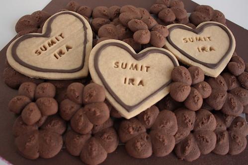 2012 08 Ira & Sumit (5)