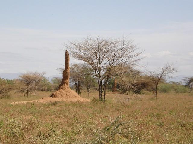 Paisaje cerca de Karo