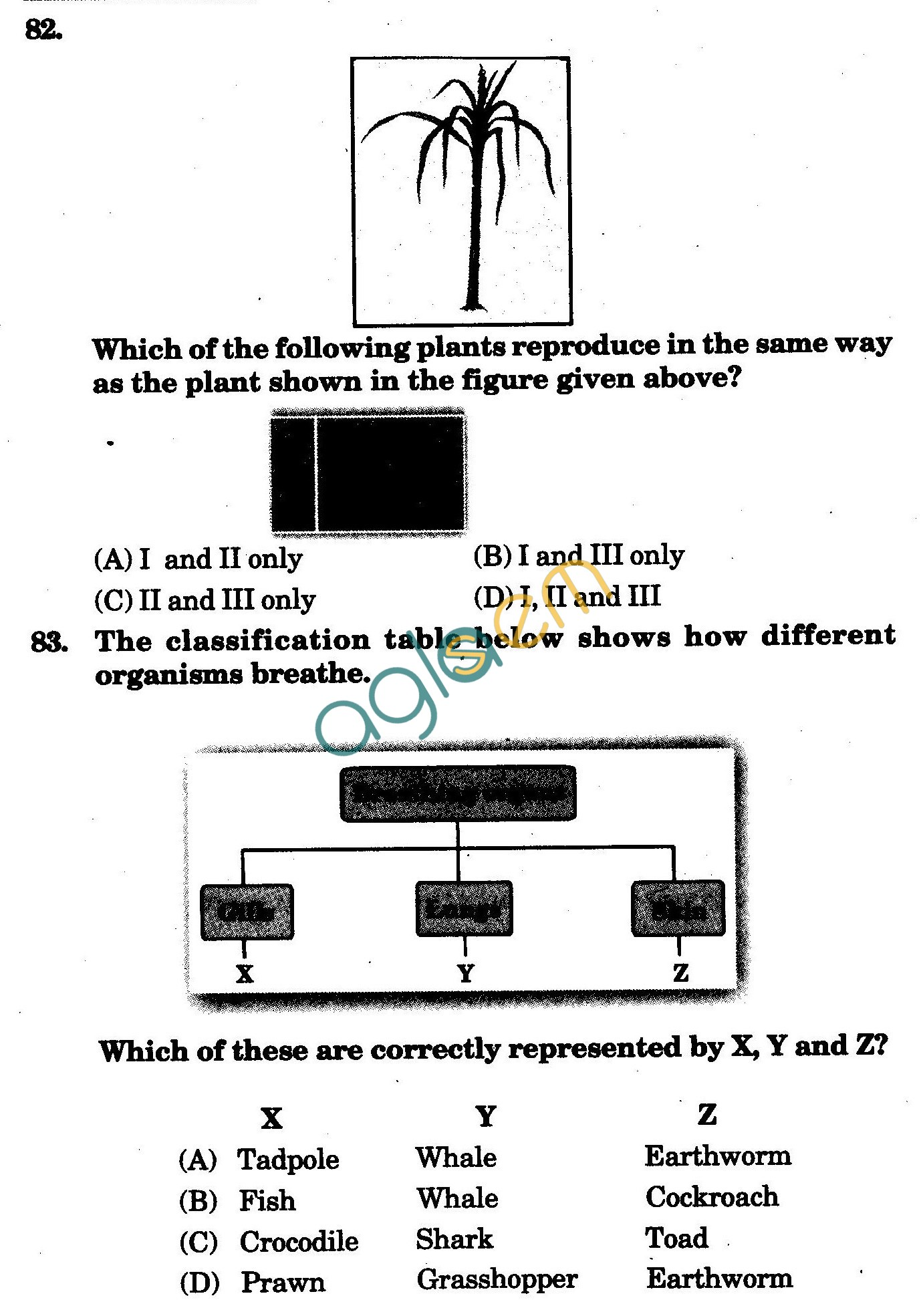 NSTSE 2009 Solved Question Paper for Class VII