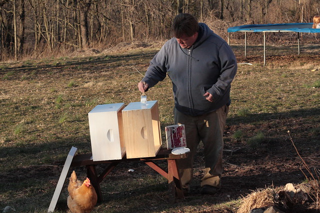Getting the hives ready