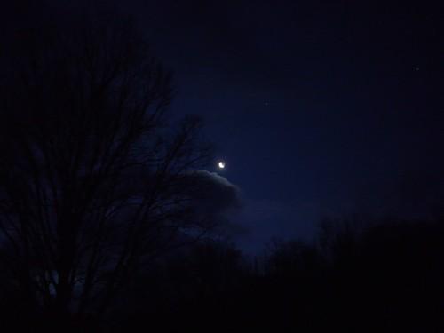 Tree, cloud, moon, star