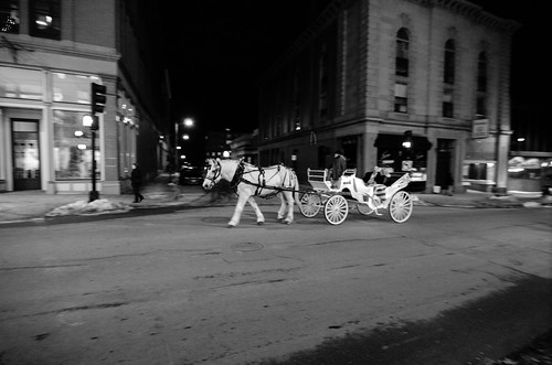 Valentine's Day Horse Ride