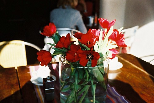Tulips at the restaurant by Fitzrovia
