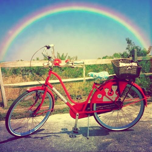 I Ride With Rainbows - explored
