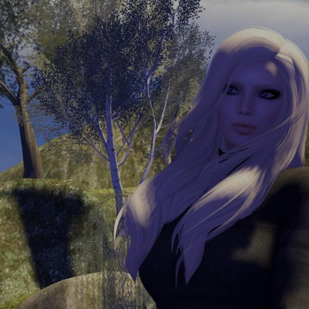 in shadow_006