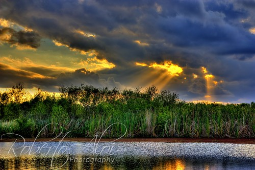 Everglades Sunset 3 by Roberto_Aloi
