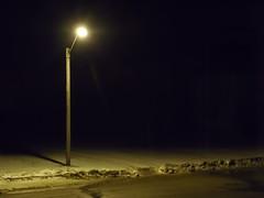 N0286 street lamp by lynneayers