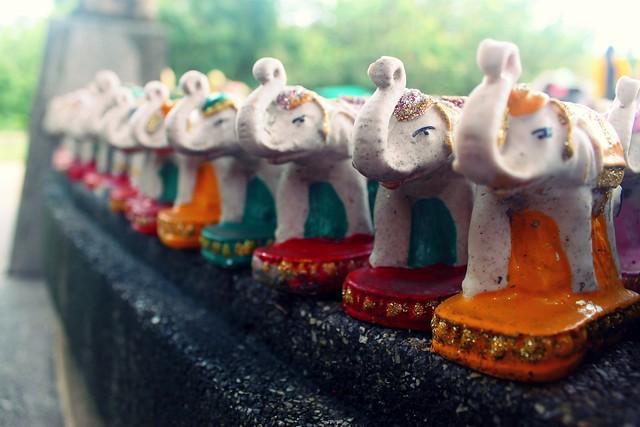 Elephants II