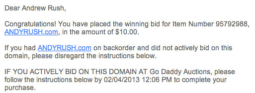 Domain Auction Winning Bid