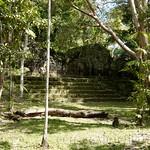 Guatemala, Ruinas de Tikal 25