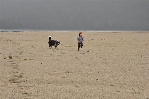 Brazo Rincon, lago Nahuel Huapi by marialuisak