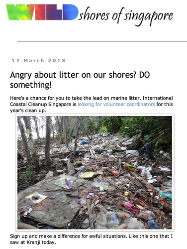 wild shores of singapore: Angry about litter on our shores? DO something!