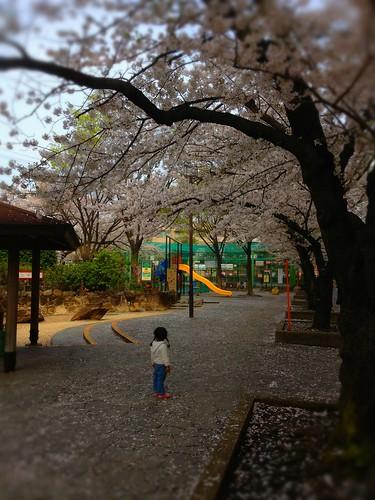 Hiroo Park