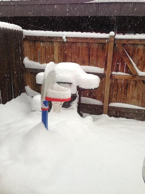 Spring blizzard II