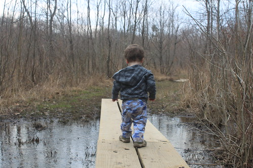 Julie J Metz Wetlands Hike - Sagan Crosses Another Bridge