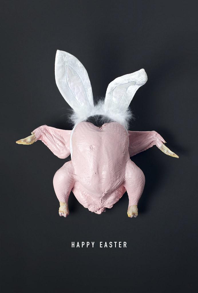 Mr Easer Bunny