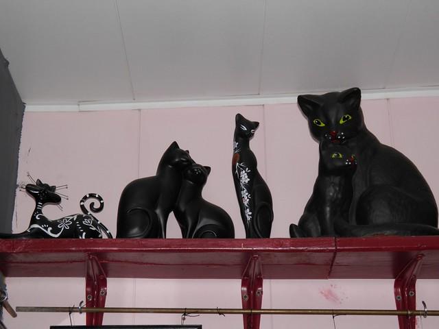 Коты на полках // Cats on shelf