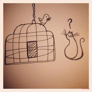 Cats&birds 2
