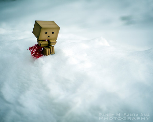 Danbo Cold At The Top Of The World.