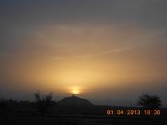 Landscape 174
