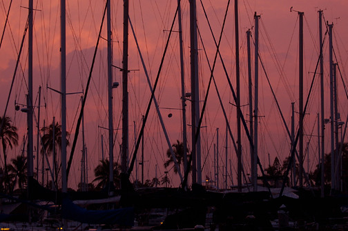 masts at Ala Wai