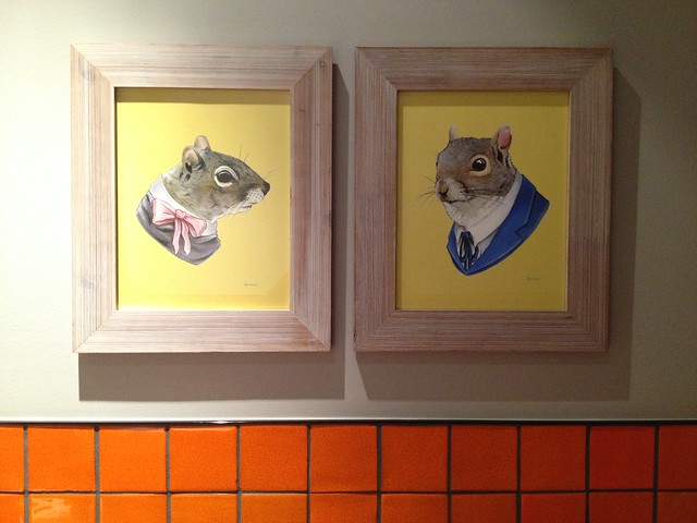 Cute squirrel portraits