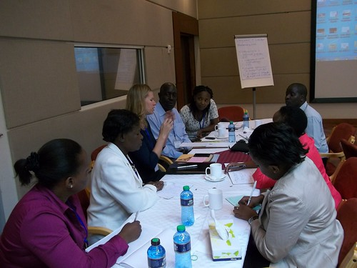 Group discussion to identify strategies for integrating rights into livestock microcredit and value chain development programs for empowering women