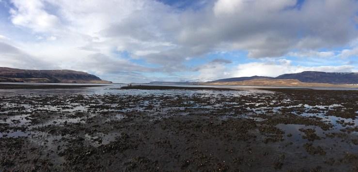 Kræklingatínsla í Hvalfirði