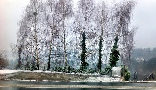 Snow on Easter Monday by SpatzMe