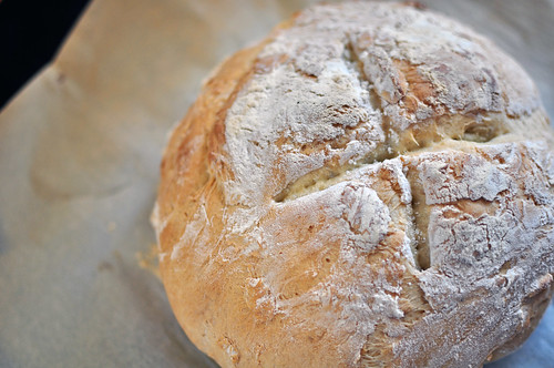 No-Knead Bread 4
