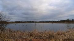 2013-02-24-Staveley Nature Reserve -P1190110