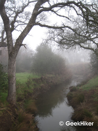 Bike_Trail_Fog_01