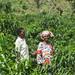 UNW_Ruanda