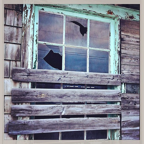 Mar 26 - one {one of the windows in an abandoned building @ the old army base in Picton} #photoaday #decay #abandoned