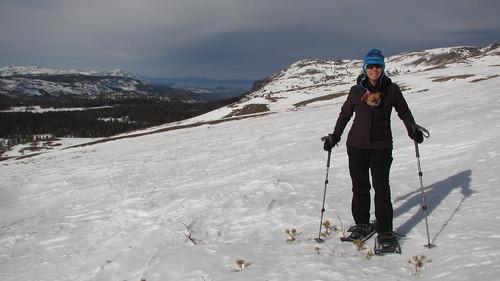 Snowshoeing Carson Pass
