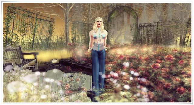 SL Fashion Pants