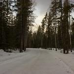 Walking back to Jasper