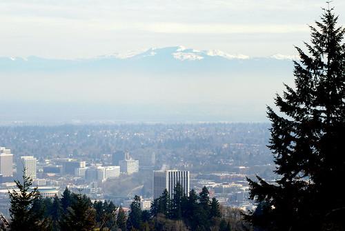 Portland by ambermae