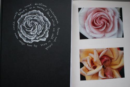 Rose Spiral