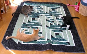 Testing Effects of Optical Illusions on Cats