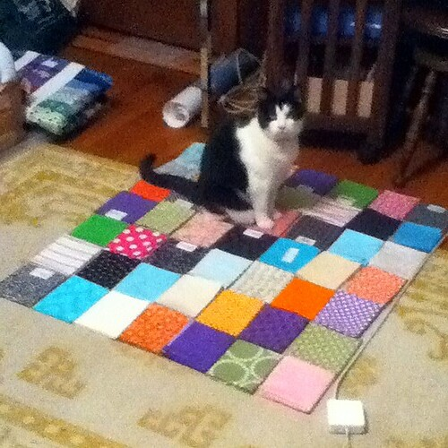 quilt backing with help